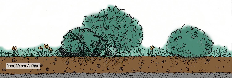linkgartenintensiv